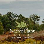 Native Plant Species Header Image