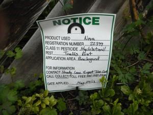Spraying lawn pesticides.