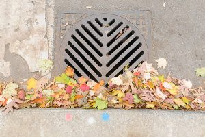 Storm sewer grate with paint splotches denoting monthly applications of BT larvicide for West Nile Virus control.