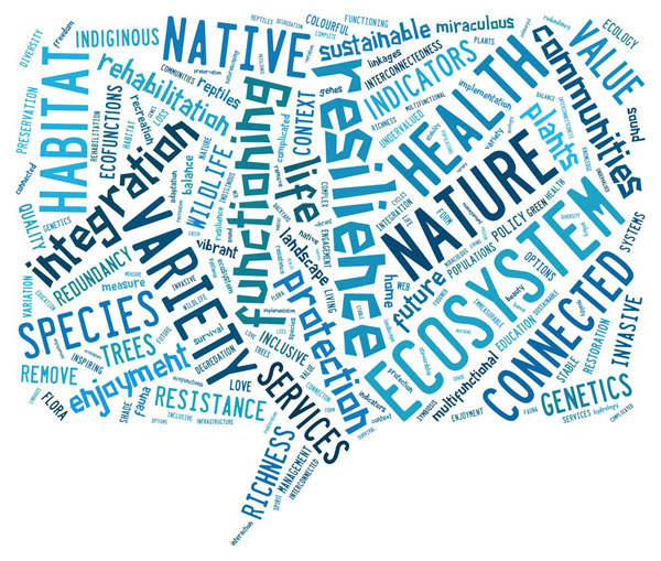 Word mash for the Biodiversity in the City workshop. Source: ICLEI Canada.