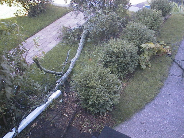 Branch debris and dented downspout disconnection.