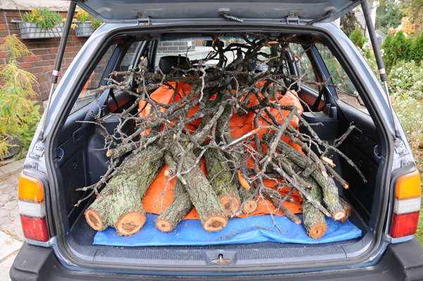 The loot in the boot, custom cut. Off to ZooWoods restoration site.